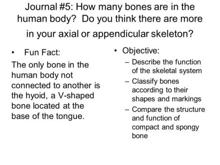 Journal #5: How many bones are in the human body? Do you think there are more in your axial or appendicular skeleton? Fun Fact: The only bone in the human.