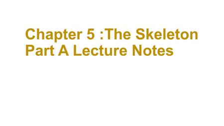 Chapter 5 :The Skeleton Part A Lecture Notes. The Skeletal System ***Quiz 1 Info Parts of the skeletal system Bones (skeleton) Joints Cartilages Ligaments.