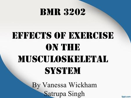 BMR 3202 EFFECTS OF EXERCISE ON THE MUSCULOSKELETAL SYSTEM By Vanessa Wickham Satrupa Singh.