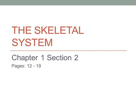 THE SKELETAL SYSTEM Chapter 1 Section 2 Pages: 12 - 19.