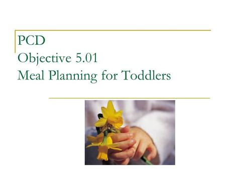 PCD Objective 5.01 Meal Planning for Toddlers
