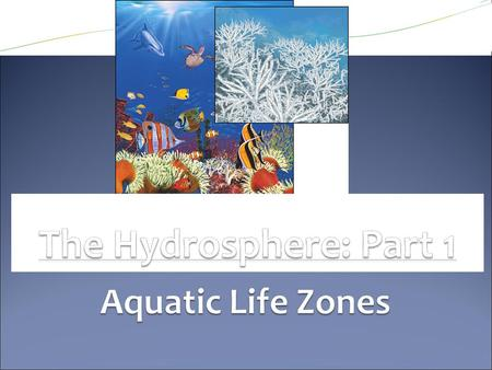 ● Aquatic Life Zones ● Types of organisms in an aquatic ecosystem are mainly determined by salinity (amount of salt): ● Saltwater/ Marine life zones ●
