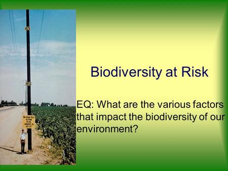 Biodiversity at Risk EQ: What are the various factors that impact the biodiversity of our environment?