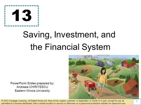 PowerPoint Slides prepared by: Andreea CHIRITESCU Eastern Illinois University 13 Saving, Investment, and the Financial System © 2015 Cengage Learning.