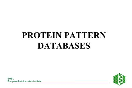 PROTEIN PATTERN DATABASES. PROTEIN SEQUENCES SUPERFAMILY FAMILY DOMAIN MOTIF SITE RESIDUE.