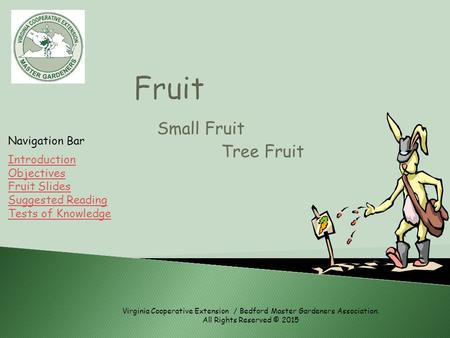 Small Fruit Tree Fruit Introduction Objectives Fruit Slides Suggested Reading Tests of Knowledge Navigation Bar Virginia Cooperative Extension / Bedford.