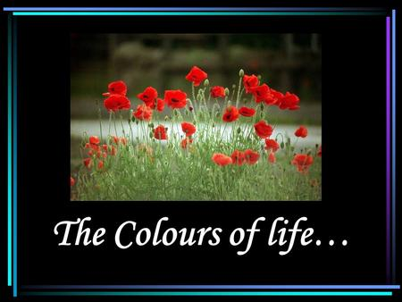 The Colours of life… Introduction Name Rashid Saeed Age 22 years UAE National Student, D.C.S.N.