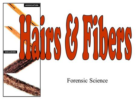 Hairs & Fibers Forensic Science.
