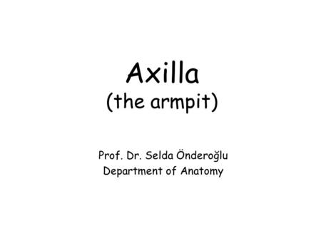 Axilla (the armpit) Prof. Dr. Selda Önderoğlu Department of Anatomy.