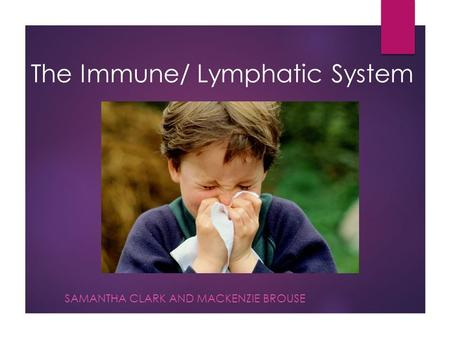 The Immune/ Lymphatic System SAMANTHA CLARK AND MACKENZIE BROUSE.