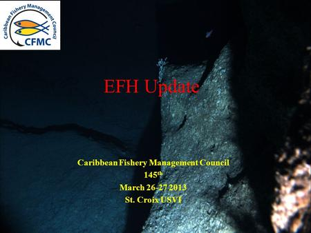 EFH Update Caribbean Fishery Management Council 145 th March 26-27 2013 St. Croix USVI.