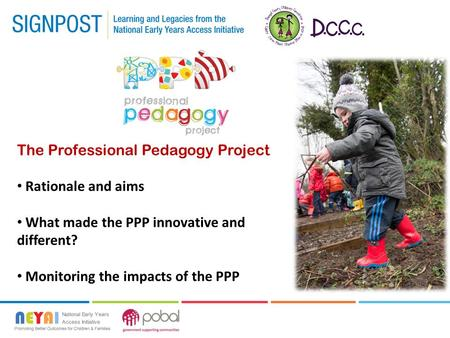 The Professional Pedagogy Project Rationale and aims What made the PPP innovative and different? Monitoring the impacts of the PPP.