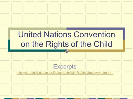 United Nations Convention on the Rights of the Child Excerpts