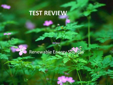 TEST REVIEW Renewable Energy Sources. ROUND 1 1. Renewable energy sources are so named because… A. Do not pollute the environment B. Are constantly re-produced.