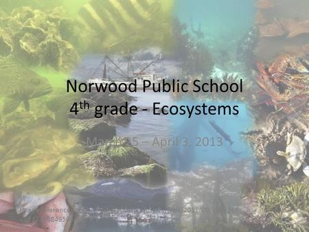 Norwood Public School 4 th grade - Ecosystems March 25 – April 3, 2013 Image reference:  e1317398849506.jpg.