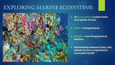 EXPLORING MARINE ECOSYSTEMS  All ecosystems contain biotic and abiotic factors  Biotic = living features  Abiotic = non-living physical features  Relationship.