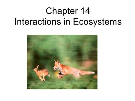 Chapter 14 Interactions in Ecosystems. Section 14.1 Habitat and Niche.
