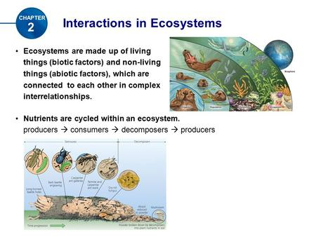 Interactions in Ecosystems 2 CHAPTER Ecosystems are made up of living things (biotic factors) and non-living things (abiotic factors), which are connected.