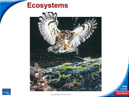 End Show Slide 1 of 41 Copyright Pearson Prentice Hall Ecosystems.