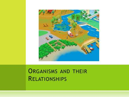 relationship of organisms and their environment