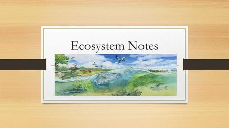 Ecosystem Notes. Ecosystem A system consisting of all of the interactions that occur between biotic and abiotic factors within a given area.
