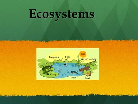 Ecosystems. First of all.. What is an ecosystem? Can you tell me what an ecosystem is in your own words? What about a biome ? Can you tell me what an.