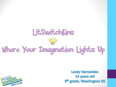 Mission Statement: Litswitchkins will provide our customers with unique, cute, and customizable light switch panels. We will try to make the customer.