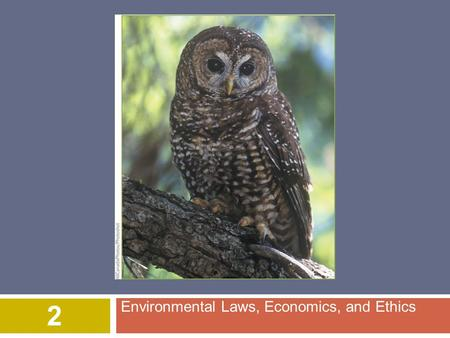 Environmental Laws, Economics, and Ethics 2. © 2015 John Wiley & Sons, Inc. All rights reserved. Overview of Chapter 2  Brief Environmental History of.