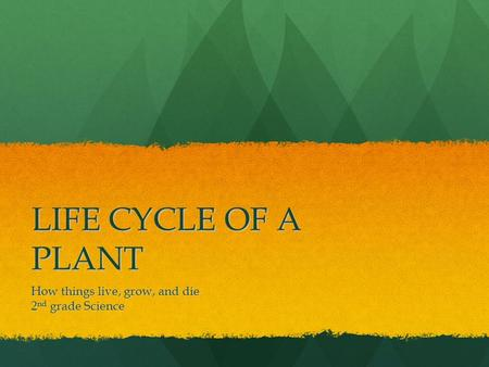 LIFE CYCLE OF A PLANT How things live, grow, and die 2 nd grade Science.