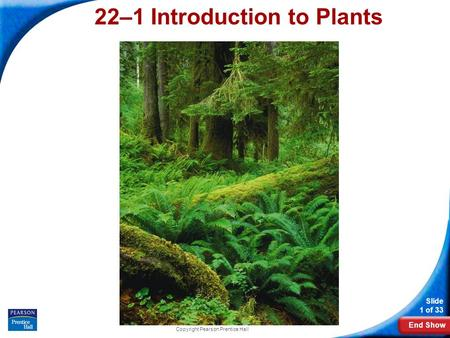End Show Slide 1 of 33 Copyright Pearson Prentice Hall 22–1 Introduction to Plants.