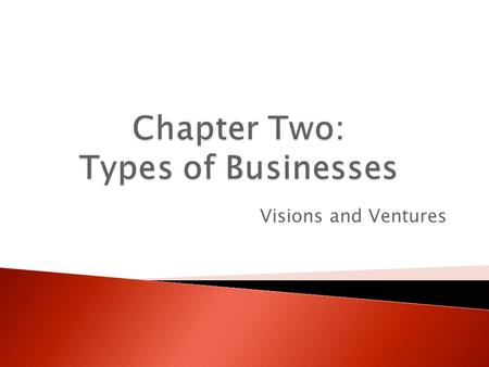 Chapter Two: Types of Businesses