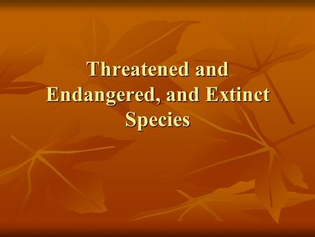 Threatened and Endangered, and Extinct Species. Biodiversity Extinction – the process by which an organism is no longer in existence as a species Extinction.