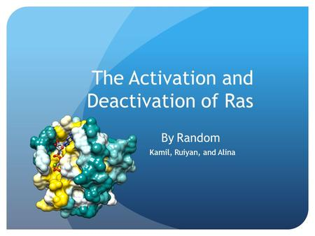 The Activation and Deactivation of Ras By Random Kamil, Ruiyan, and Alina.