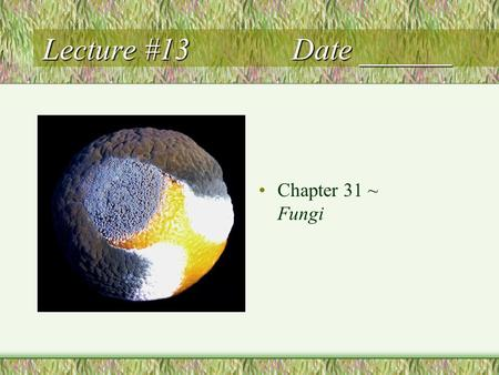 Lecture #13 Date ______ Chapter 31 ~ Fungi. Fungi Heterotrophic by absorption (exoenzymes) Decomposers (saprobes), parasites, mutualistic symbionts (lichens)