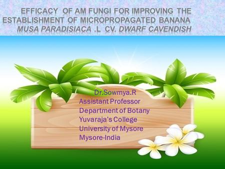 Dr.Sowmya.R Assistant Professor Department of Botany Yuvaraja's College University of Mysore Mysore-India.