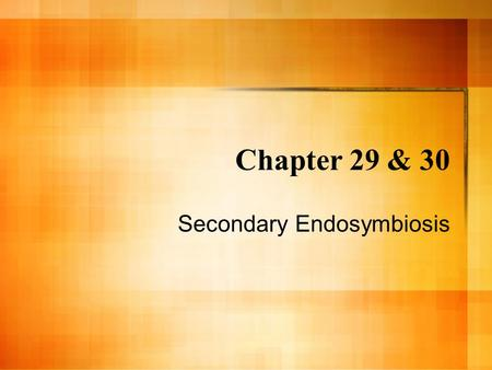 Chapter 29 & 30 Secondary Endosymbiosis. The Eukaryotic Lineage Eukaryotes are believed to have arisen as a result of symbiosis. All prokaryotes have.