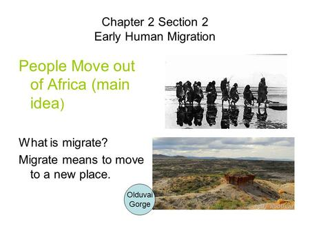 Chapter 2 Section 2 Early Human Migration People Move out of Africa (main idea ) What is migrate? Migrate means to move to a new place. Olduvai Gorge.