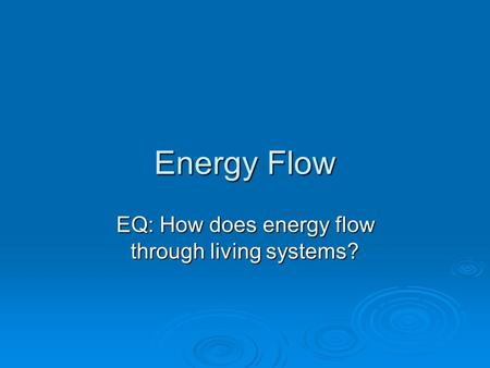 Energy Flow EQ: How does energy flow through living systems?