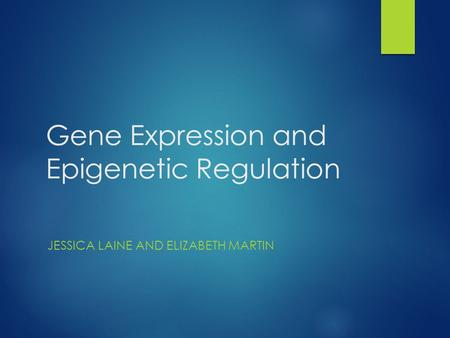 Gene Expression and Epigenetic Regulation JESSICA LAINE AND ELIZABETH MARTIN.