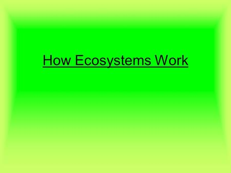 How Ecosystems Work. How Ecosystems Work Big Ideas Energy is transferred from the sun to producers Producers then transfer the energy to consumers Inefficient.