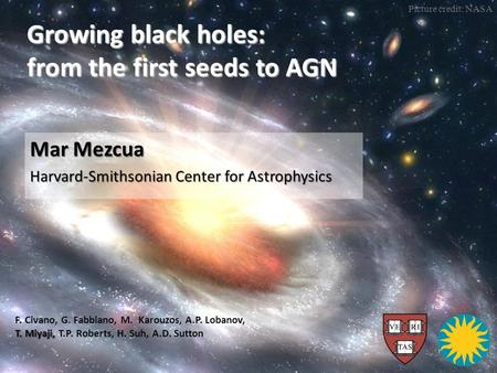 Growing black holes: from the first seeds to AGN Mar Mezcua Harvard-Smithsonian Center for Astrophysics T. Miyaji, F. Civano, G. Fabbiano, M. Karouzos,
