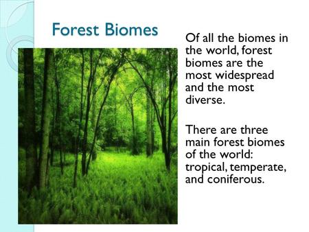 Forest Biomes Of all the biomes in the world, forest biomes are the most widespread and the most diverse. There are three main forest biomes of the world: