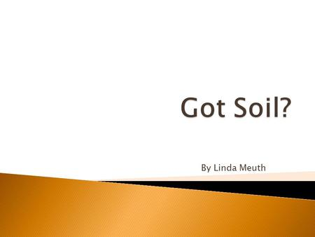 By Linda Meuth. Today, we will learn  Importance of soils  How soils are formed  Components of soils.