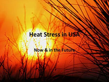 Heat Stress in USA Now & in the Future. Heat Stress in USA: Why study USA? Have studied India and SE Asia – Extensive period of heat with little variation.