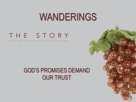 WANDERINGS GOD'S PROMISES DEMAND OUR TRUST. WORDS TO LIVE BY 1.If you were leaving a church, a company, or your family for the very last time, what would.