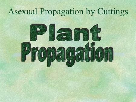 Asexual Propagation by Cuttings. Table of Contents §Introduction to Plant Propagation §Sexual Propagation §Asexual Propagation l Stem, Leaf, Cuttings.
