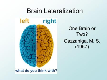 Brain Lateralization One Brain or Two? Gazzaniga, M. S. (1967)