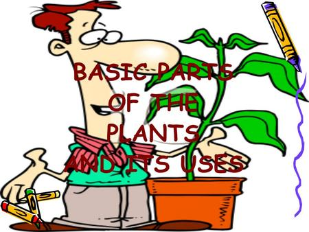 BASIC PARTS OF THE PLANTS AND ITS USES. Unit Summary –Plants are alive, just like people and animals. They grow and die, need energy, nutrients, air,