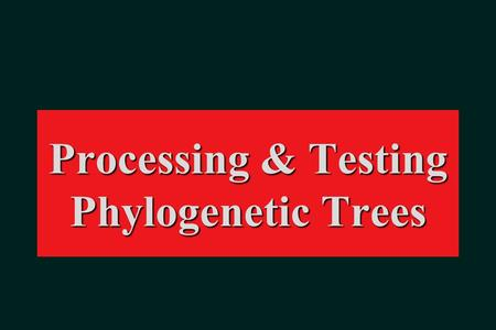 Processing & Testing Phylogenetic Trees. Rooting.