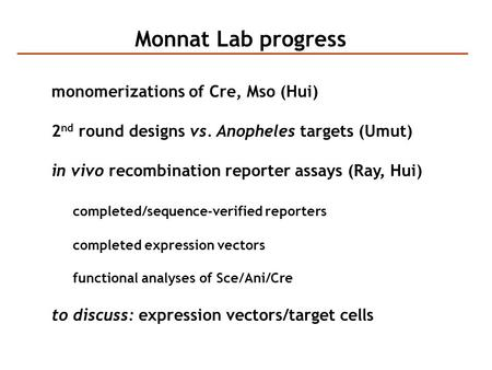 Monnat Lab progress monomerizations of Cre, Mso (Hui) 2 nd round designs vs. Anopheles targets (Umut) in vivo recombination reporter assays (Ray, Hui)